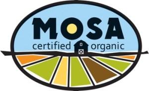 Mosa logo color