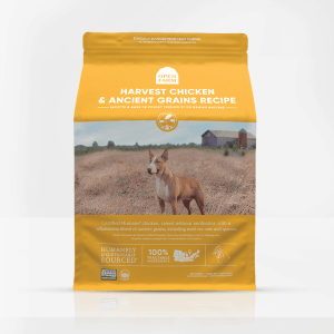 Open Farm Chicken Ancient Grains Front of Bag