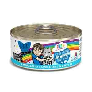 Weruva BFF OMG Chicken pumpkin love munchkin canned cat food 5.5oz