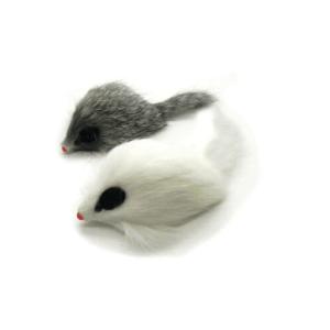 APP Longhair Mice