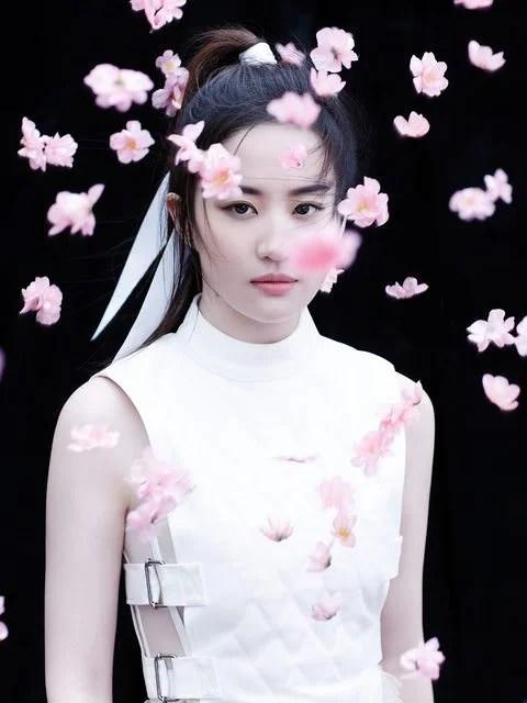 Donnie Yen é confirmado no elenco do live-action de Mulan