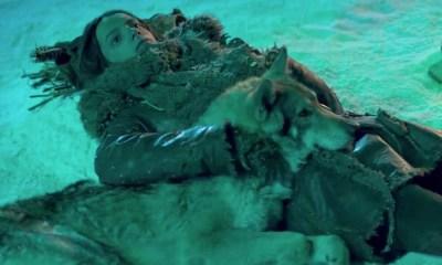 Alpha   Filme é alvo de boicote da Organização Protetora dos Animais