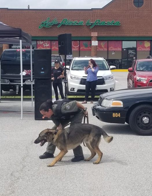Chase Police Canine