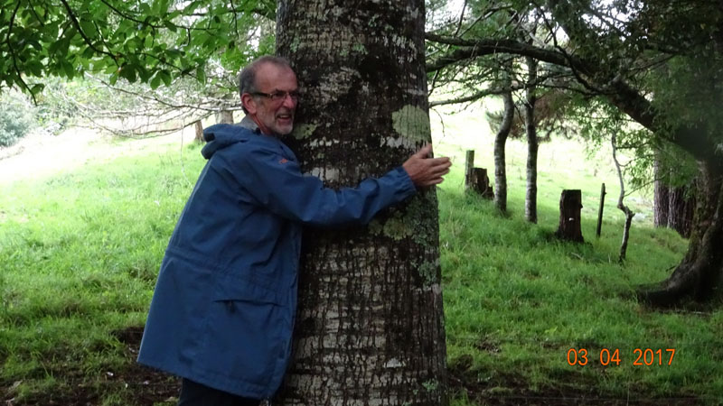 Eric Cairns loves trees!