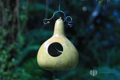 Gourd Tree Earring Bird Feeder