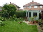 Q654.02 - Privet Hedge Reduction 02