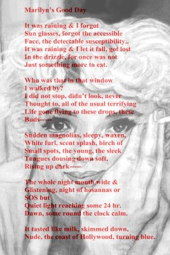 Marilyn's Good Day with Marilyn by Stephen Mead