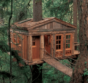 Five Simple Tips For Harmonious Treehouse Building Treehouse By