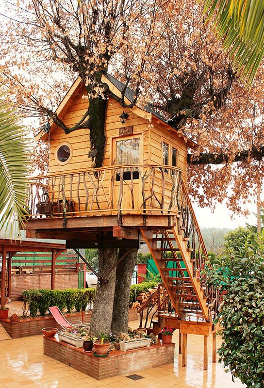 Casa en el rbol Particulares  Treehouse Ibrica