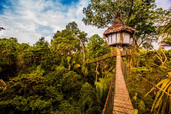 treehouse resort peru
