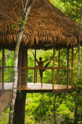 yoga retreats at the top of a treehouse