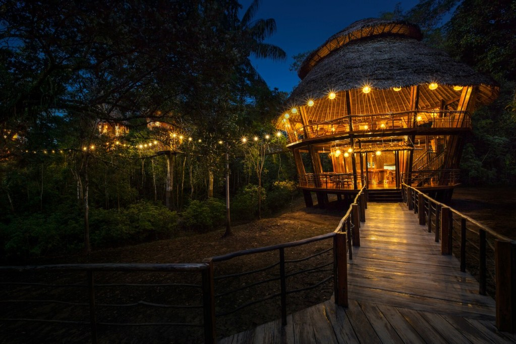 treehouse lodge night