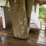 treehouse peru