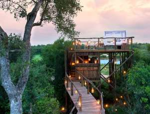 Luxury treehouses in South Africa - Lion-Sands-Game-Reserve-001