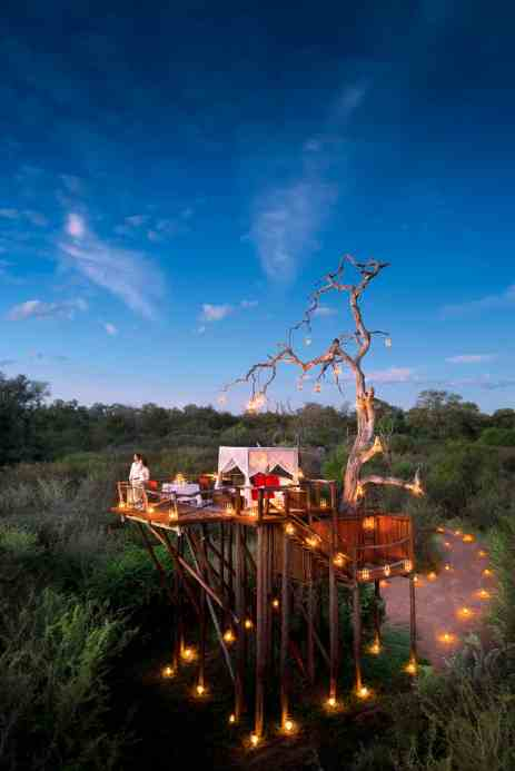 Treehotel in South Africa - Lion Sands Chalkley Treehouse