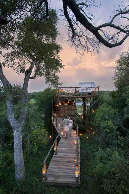 Treehotel in South Africa - Lion Sands Tinyeleti Treehouse