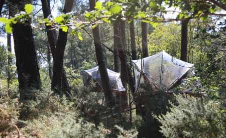 Tree House Hotel In France Bubble Tents Tree House