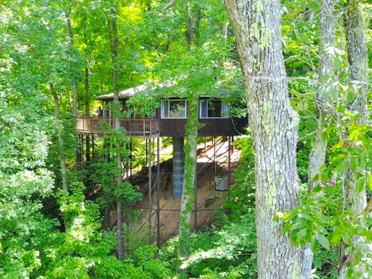 Amazing Tree House Rental near Cumberland Falls State Park, Kentucky