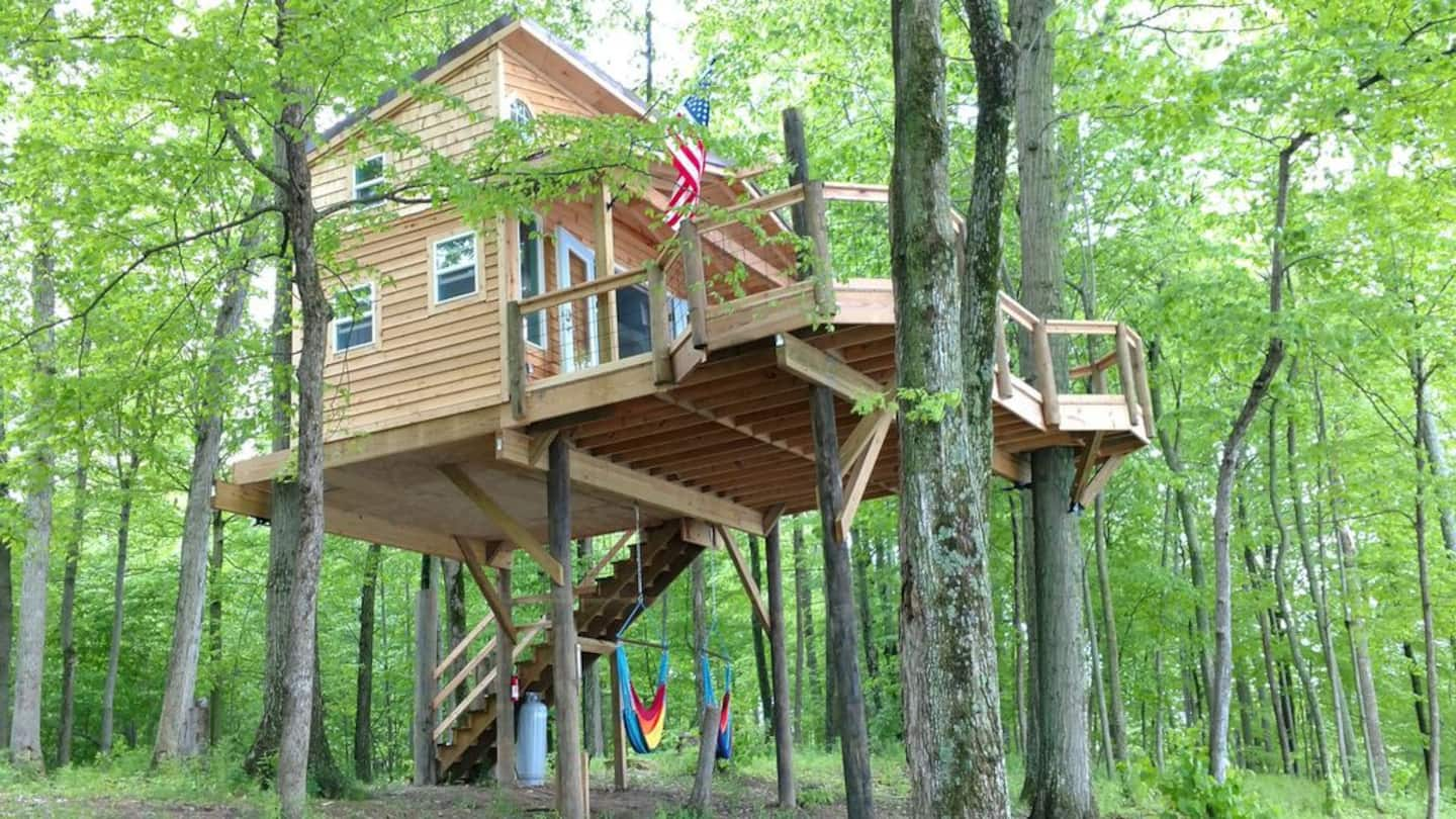 Tree House in Michigan Airbnb