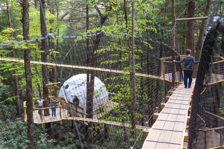 Puma Dome - Kentucky Treehouse VIllage
