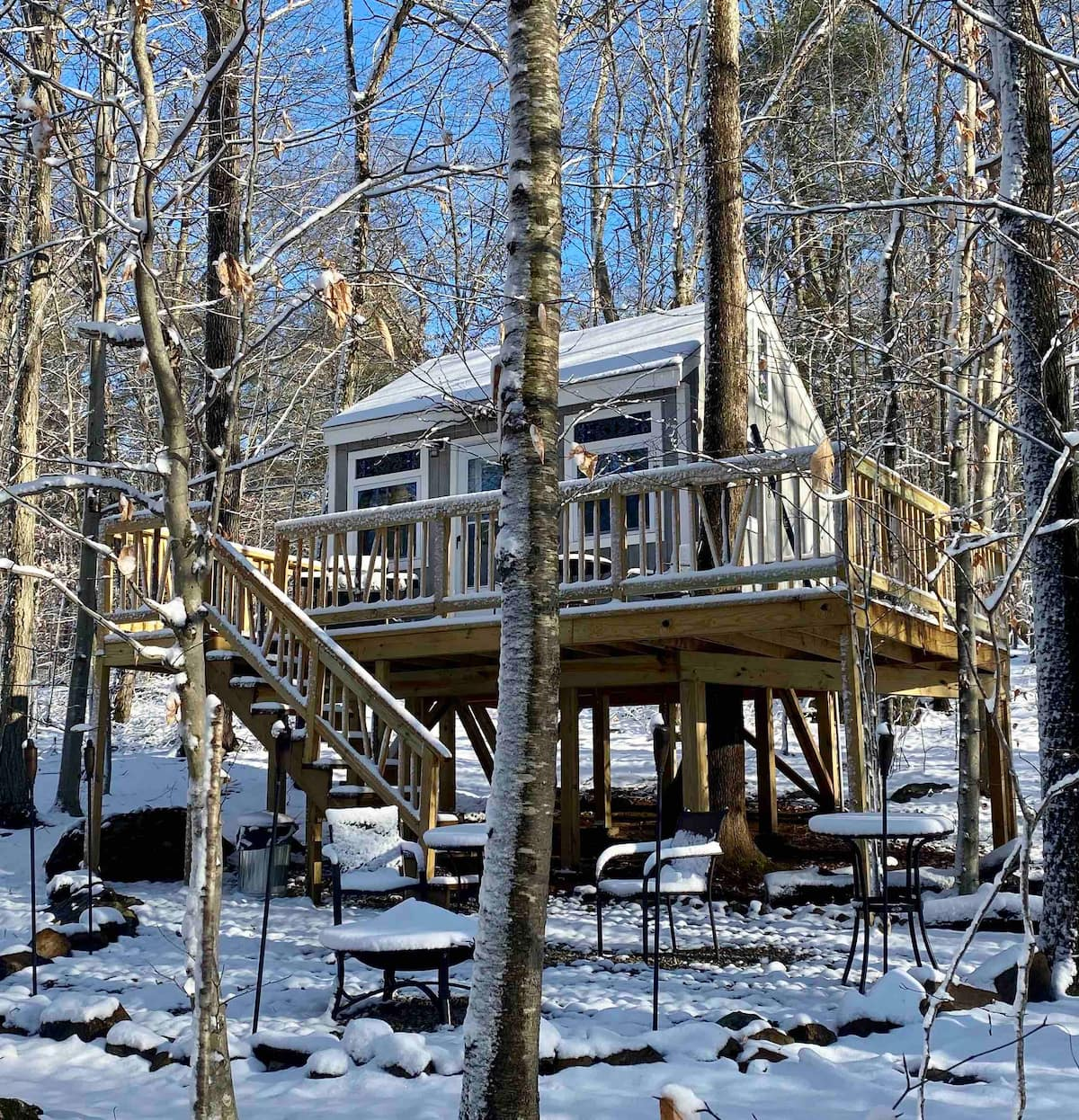 Water Forest Retreat- Tree House