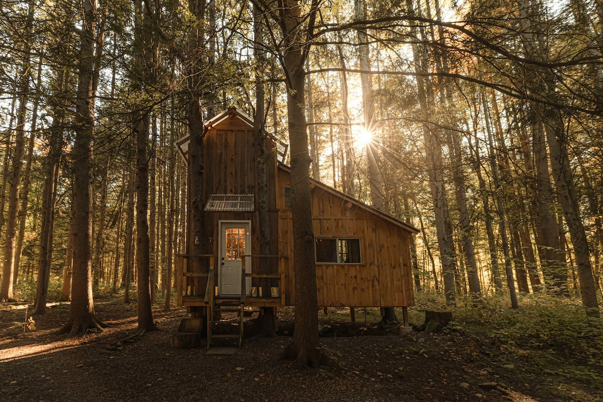 Goodall's Treehouse Cabin in New York