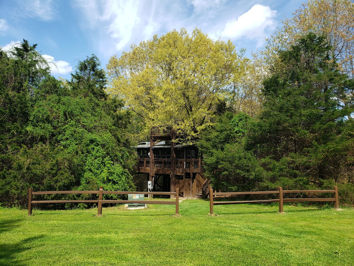 The Treehouse at Wolf Springs Arkansas Airbnb