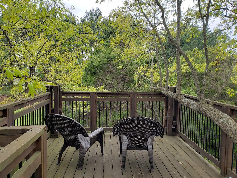 Treehouses in Arkansas