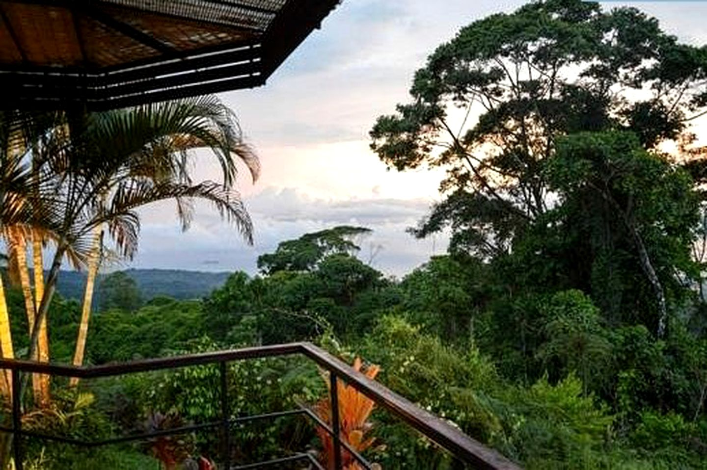Upscale Tree House Cabin with Infinity Pool, Costa Rica