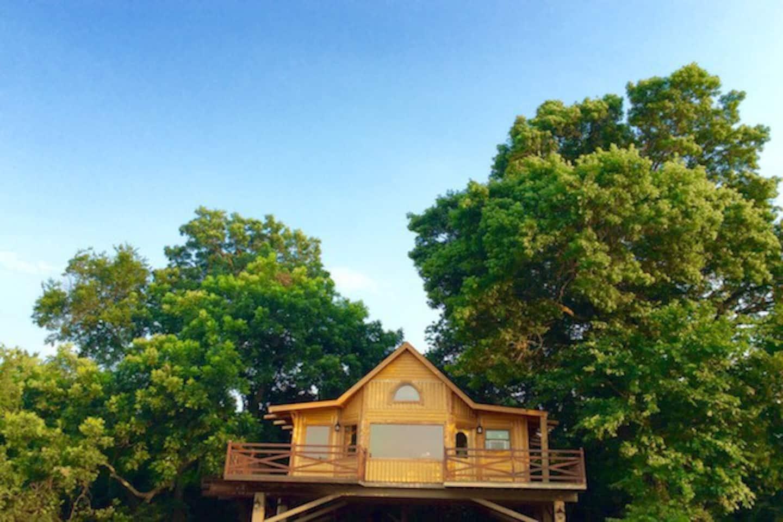 Bird's Nest Tree House Oklahoma Airbnb