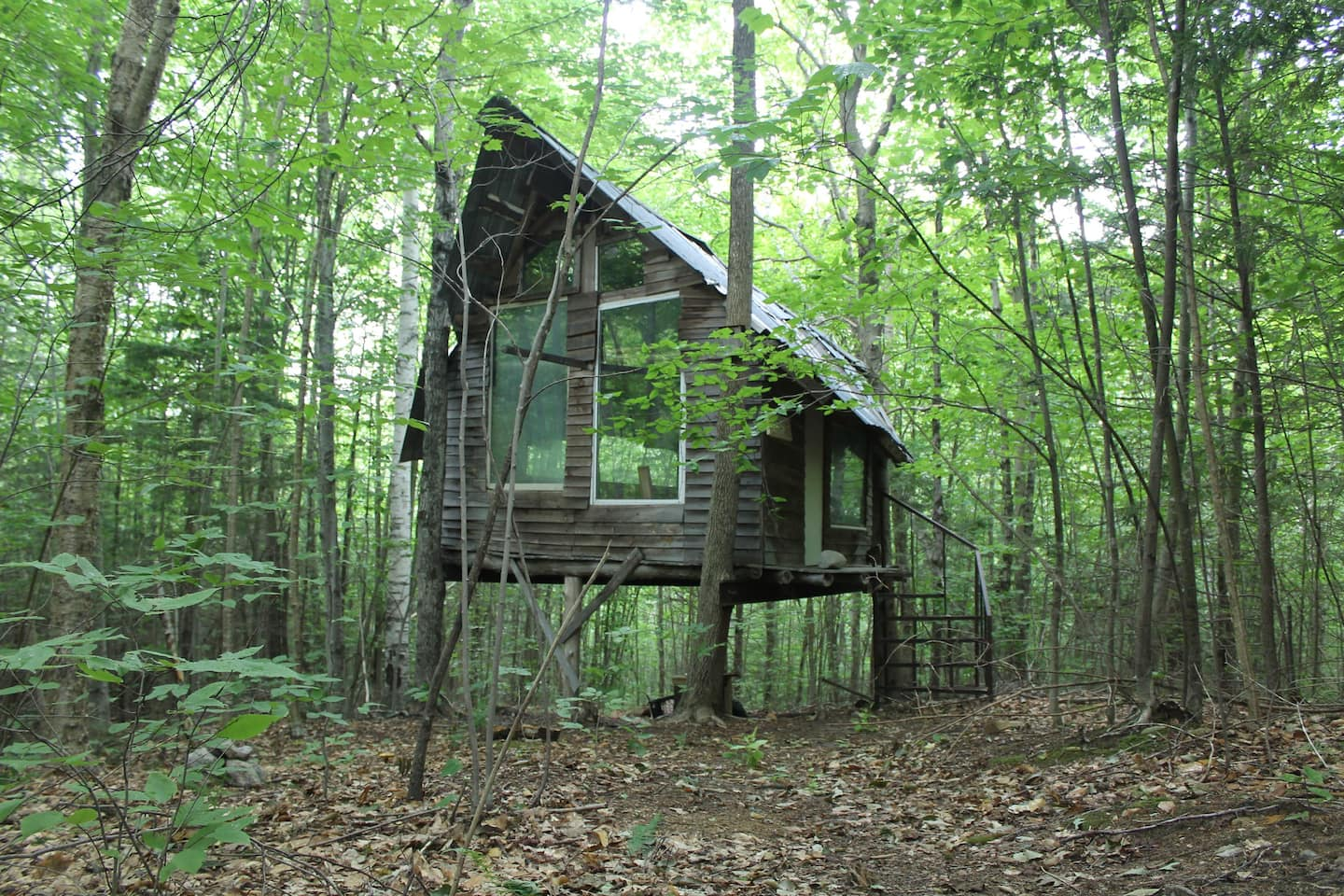 New Hampshire Treehouse - The Hostel at D Acres