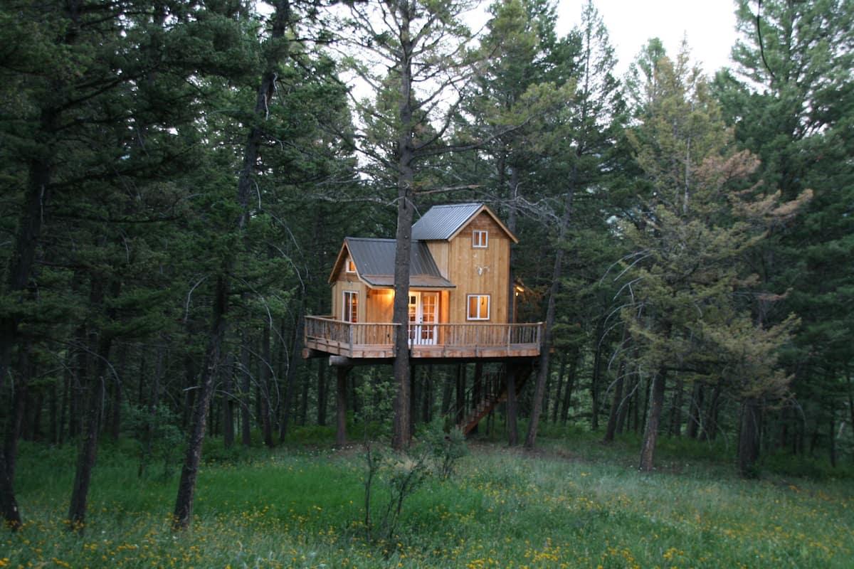 Papa's Treehouse Bozeman Montana