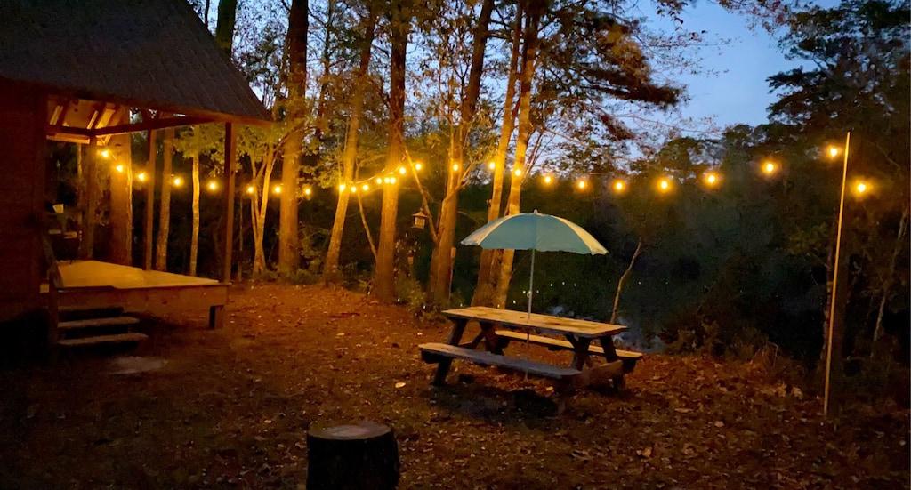 Secluded Cabin Near Creek