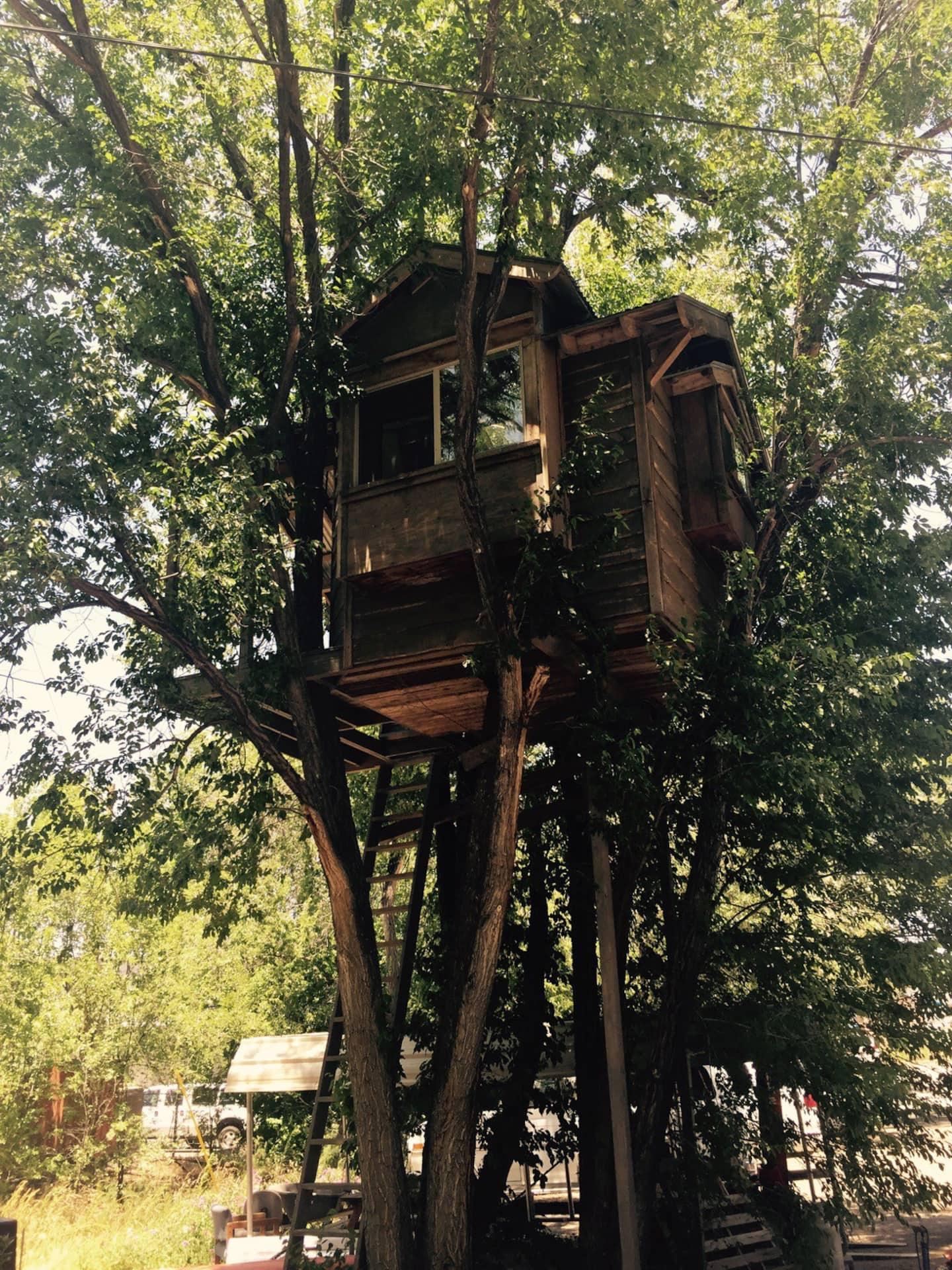 Treehouse Airbnb Arizona