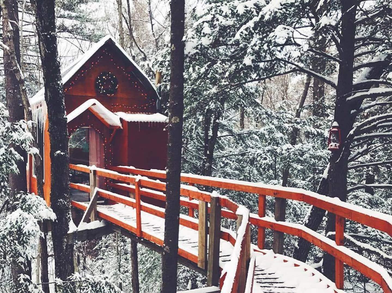 Treetop Sanctuary Airbnb Treehouse Rental