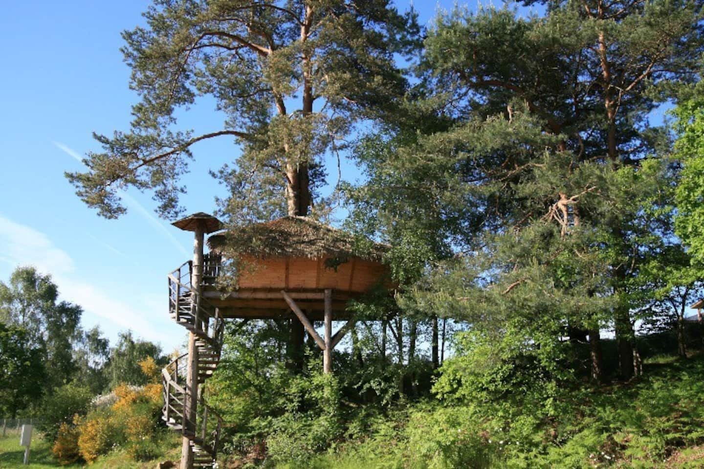 Lakefront Treehouse in France Rental Airbnb