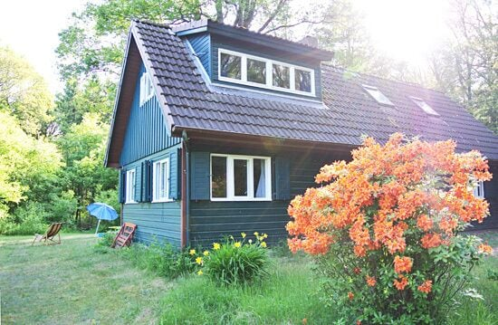Treehouse Rentals in Germany Cabin in Bass