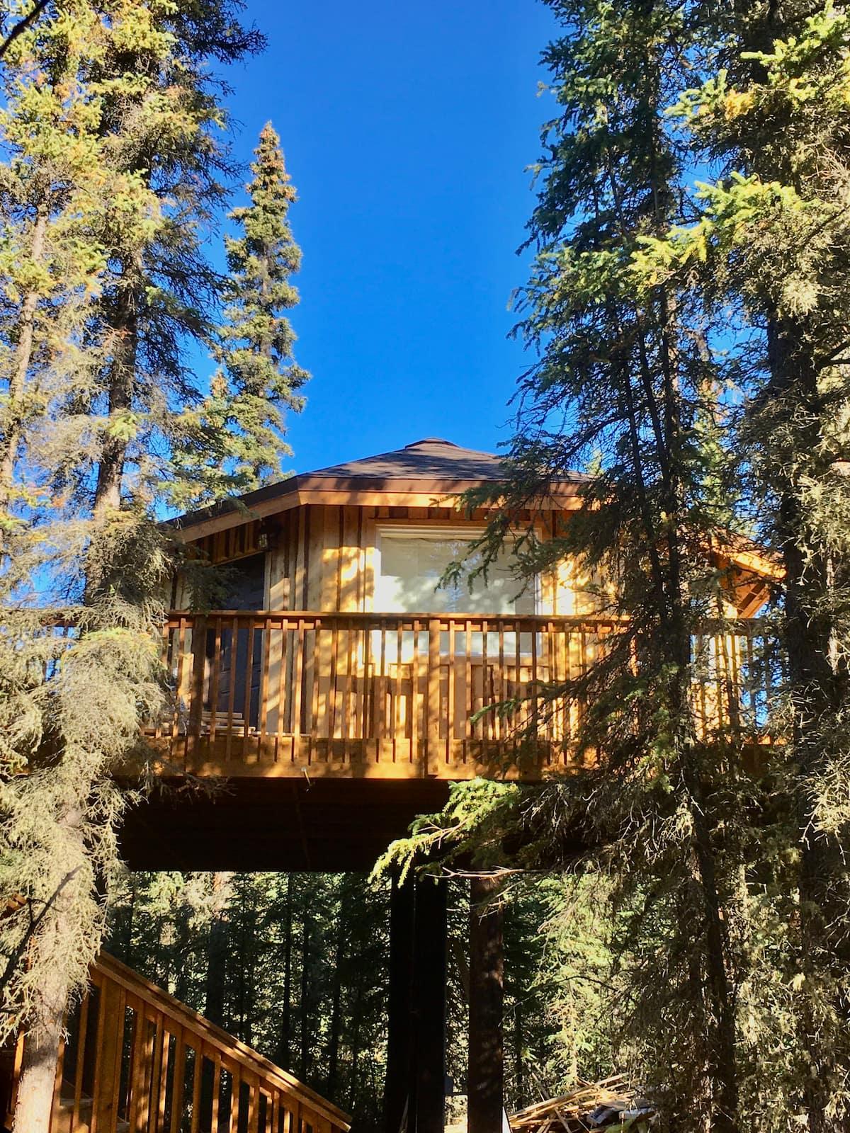 Alaska Treehouse Airbnb