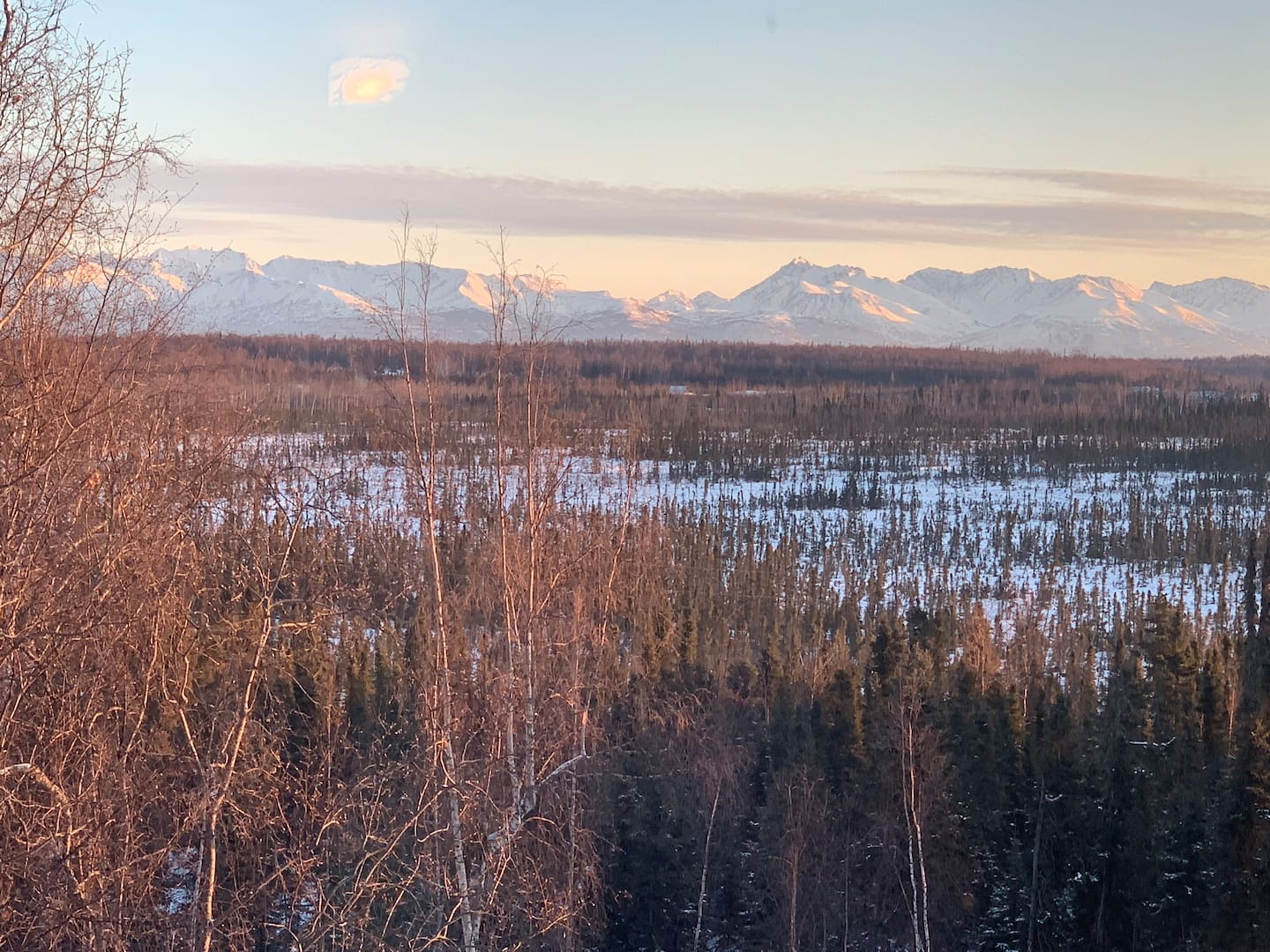 Alaska Treehouse with view Airbnb
