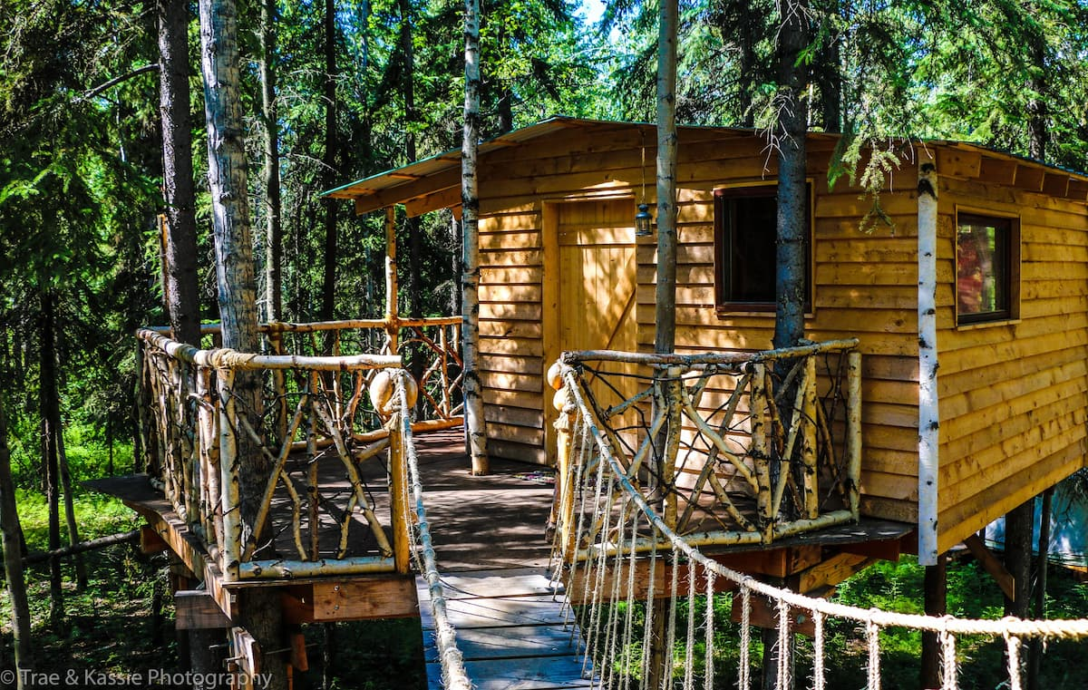 Indiana Jones Tree House Airbnb Alaska