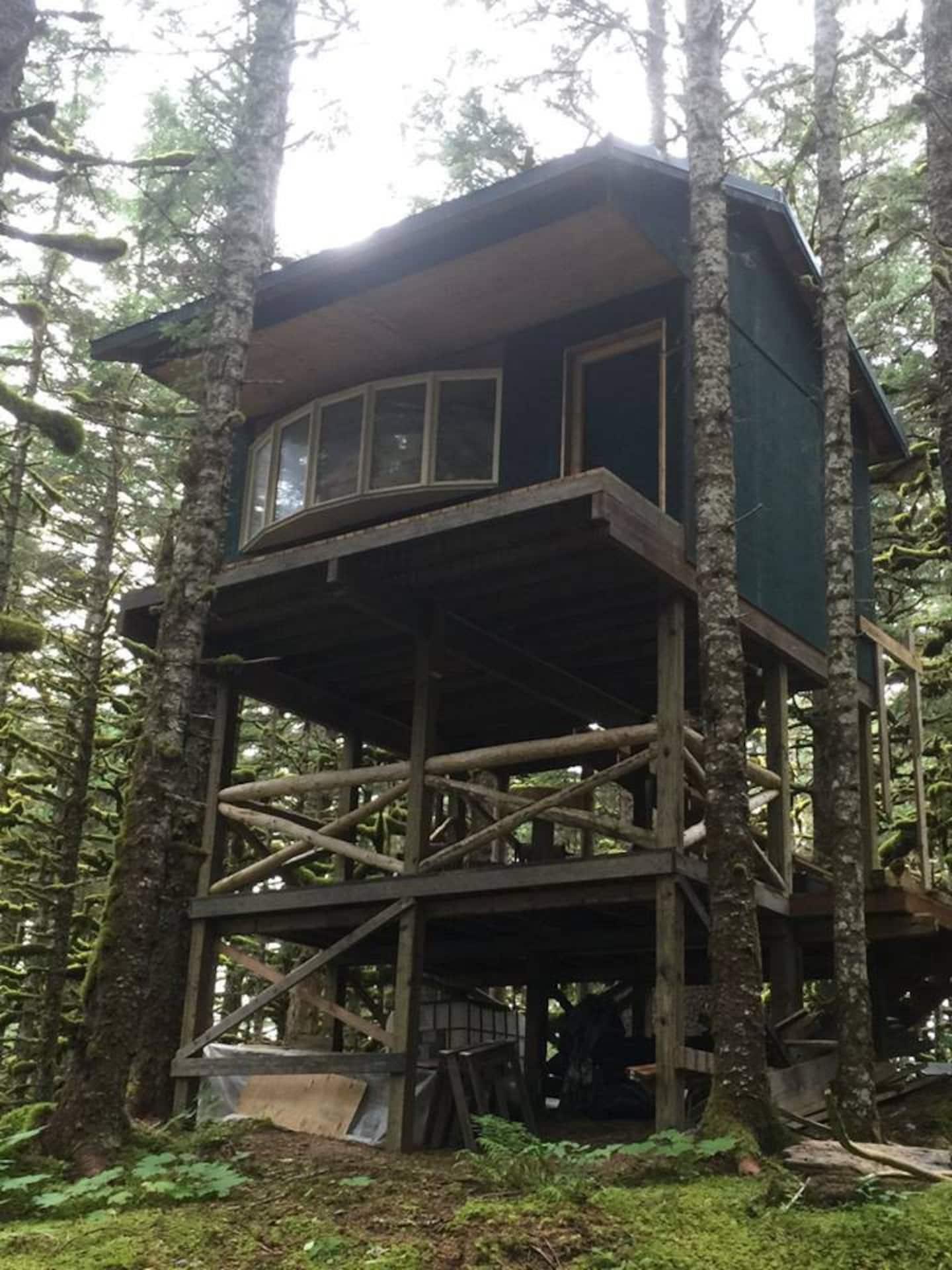 The Eagle's Nest — Whale Island Treehouse