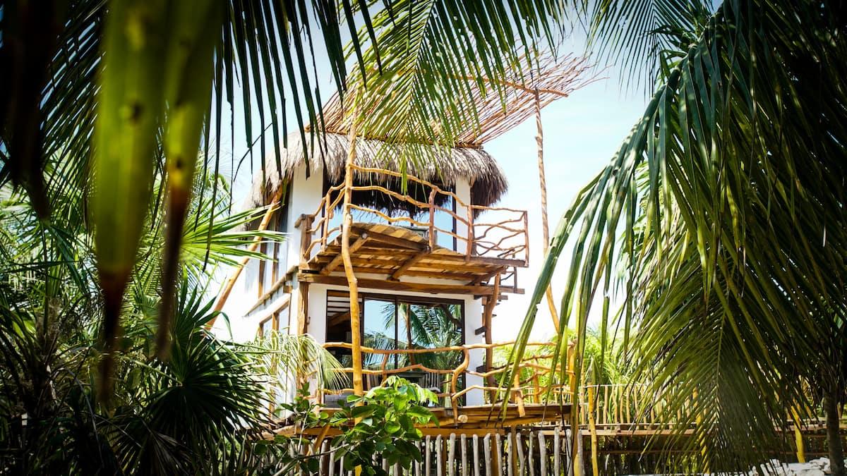 Baläo Beach Treehouse in Mexico
