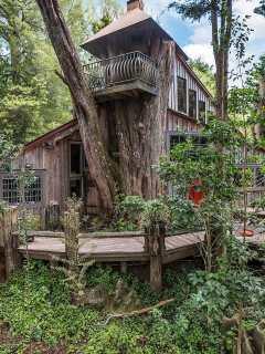 Fairytale Treehouse Rental New Zealand