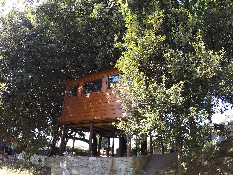 Treehouse Holm Oaks