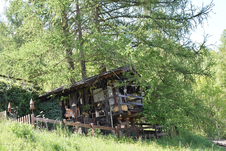 Treehut Treehouse italy