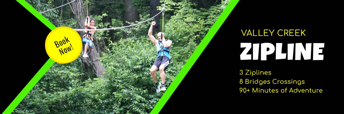 Aerial Adventures Zipline Tour