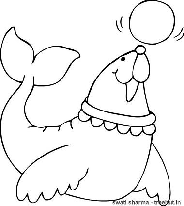 Seal Coloring Pages