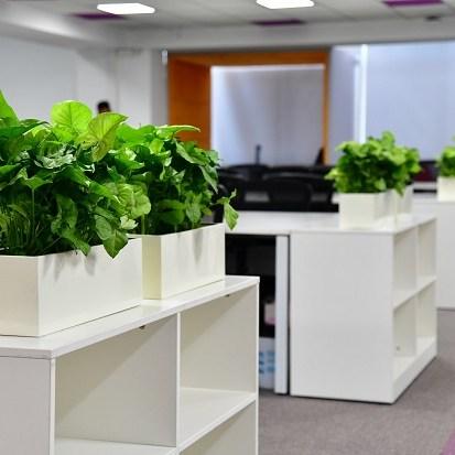 office design bangalore