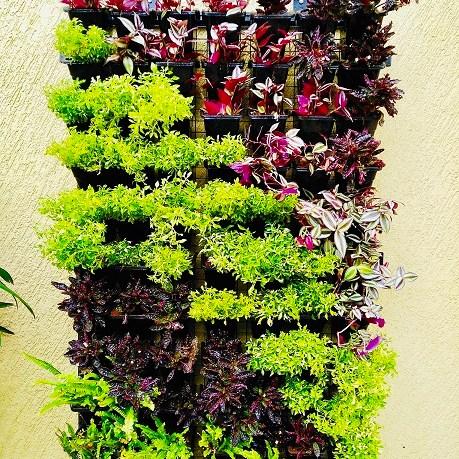 Vertical garden ideas