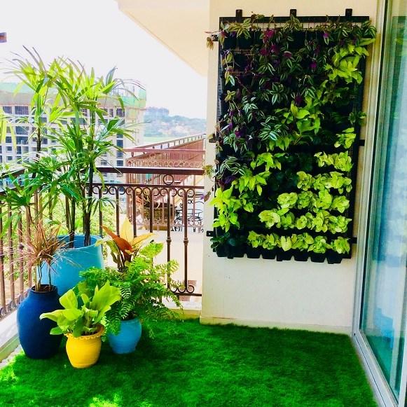 Balcony Wall garden
